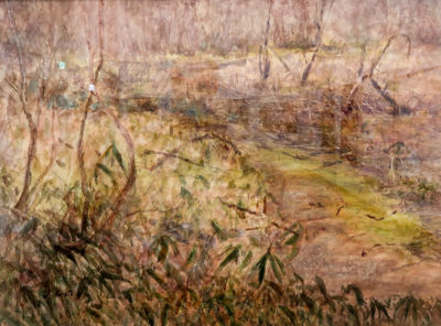 牧草地への道